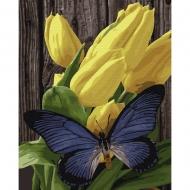 Картина по номерам BrushMe 40*50см Бабочка на тюльпанах (GX33215)