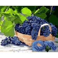 Картина по номерам Идейка 40*50см Виноград в корзине (КНО5579)
