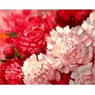 Картина по номерам BrushMe 40*50см Контрастные пионы (GX25609)