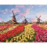 """Картина по номерам Идейка 40х50см """"Красочные тюльпаны Голландии"""""""