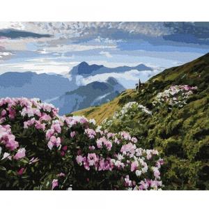 Картина по номерам BrushMe 40*50см Цветочный вид на горы (GX36557)