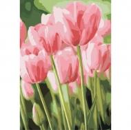 Картина по номерам Идейка 35х50см Весенние тюльпаны (КНО2069)