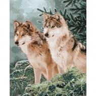 Картина по номерам Идейка 40х50см Волчий взгляд (КНО4191)