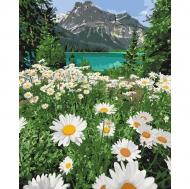 Картина по номерам Идейка 40х50см Красота природы (КНО2819)