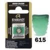 Краска акварельная Rembrandt 1,8 кювета (615) Изумрудный зеленый (05866151)