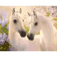 Картина по номерам Идейка 40х50см Пара коней (КНО2433)