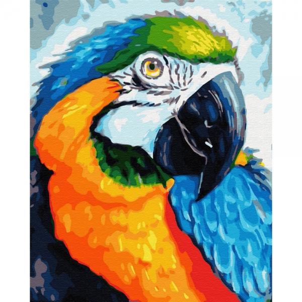 Картина по номерам BrushMe 40*50см Красочный попугай (GX33153)