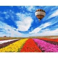 Картина по номерам BrushMe 40*50см Полёт над тюльпанным полем (GX34021)