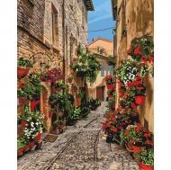 Картина по номерам Идейка 40х50см Цветущая улочка (КНО3549)