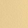 Набор бумаги для пастели 10л. Tiziano A3 (29,7*42см) 160г/м2 №05 zabaione персиковая (А372942105)