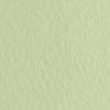 Набор бумаги для пастели 10л. Tiziano A3 (29,7*42см) 160г/м2 №11 verduzzo салатовая (А372942111)