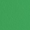 Набор бумаги для пастели 10л. Tiziano A3 (29,7*42см) 160г/м2 №12 prato зелёная (А372942112)