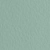 Набор бумаги для пастели 10л. Tiziano A3 (29,7*42см) 160г/м2 №13 salvia серо-зелёная (А372942113)