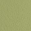Набор бумаги для пастели 10л. Tiziano A3 (29,7*42см) 160г/м2 №14 muschio оливковая (А372942114)