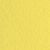 Набор бумаги для пастели 10л. Tiziano A3 (29,7*42см) 160г/м2 №20 limone лимонная (А372942120)