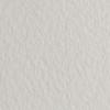 Набор бумаги для пастели 10л. Tiziano A3 (29,7*42см) 160г/м2 №26 perla перламутровая (А372942126)