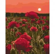 Картина по номерам Идейка 40х50см Маковая лужайка (КНО3579)
