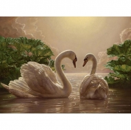 "Картина по номерам Идейка 40х50см ""Пара лебедей"""