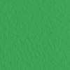 Набор бумаги для пастели 10л. Tiziano A3 (29,7*42см) 160г/м2 №37 biliardo зелёная (А372942137)