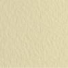 Набор бумаги для пастели 10л. Tiziano A3 (29,7*42см) 160г/м2 №40 avorio кремовая (А372942140)