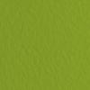 Набор бумаги для пастели 10л. Tiziano A3 (29,7*42см) 160г/м2 №43 pistacch фисташковая (А372942143)