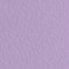 Набор бумаги для пастели 10л. Tiziano A3 (29,7*42см) 160г/м2 №45 iris фиолетовая (А372942145)