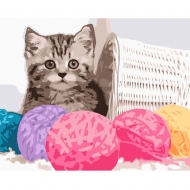 Набор картина по номерам SANTI 40*50 Пушистый котенок (953846)