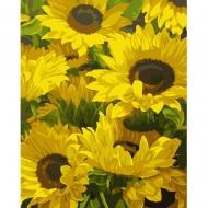 Набор картина по номерам SANTI 40*50 Солнечные цветы (953825)