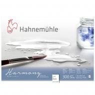 Блок WC Harmony блок А4 12л 300г rough Hahnemuhle