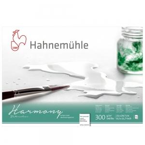 Блок для акварели Hahnemuhle Harmony блок А4 300 г/м2 12 л. НР (10628760)
