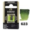 Краска акварельная Rembrandt 1,8 мл кювета (623) Сочный зеленый (05866231)