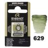 Краска акварельная Rembrandt 1,8 мл кювета (629) Зеленая земля (05866291)