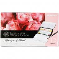 Набор акварельных красок MUNGYO Nostalgia of Pastel 12 цветов 2,5 мл полукюветы в металле (MWPH-12P)