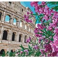 Картина по номерам Идейка 40*40 см Колизей (КНО3522)